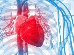 امرأة تعود إلى الحياة بعد توقف قلبها 10 دقائق